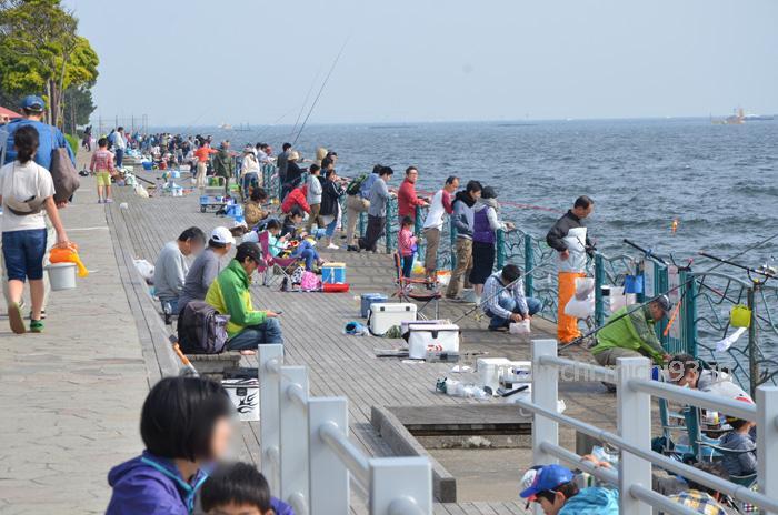 横須賀市・港湾緑地「海辺つり公園」で、子どもとサビキ釣り