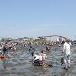2017年ゴールデンウィークは木更津海岸で潮干狩り、五種類の貝が採れました!