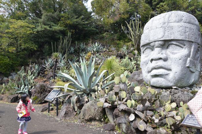 メキシコ遺跡エリア