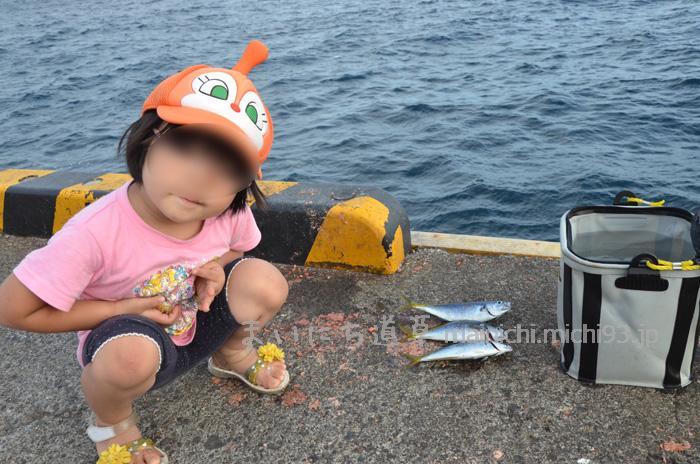 式根島港で釣り